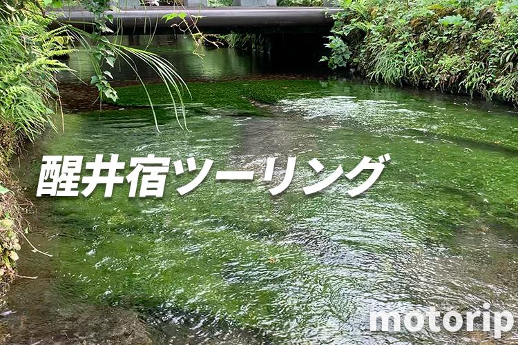 清流と水中に咲く美しい梅花藻(バイカモ)に癒やされる!醒井宿ツーリング