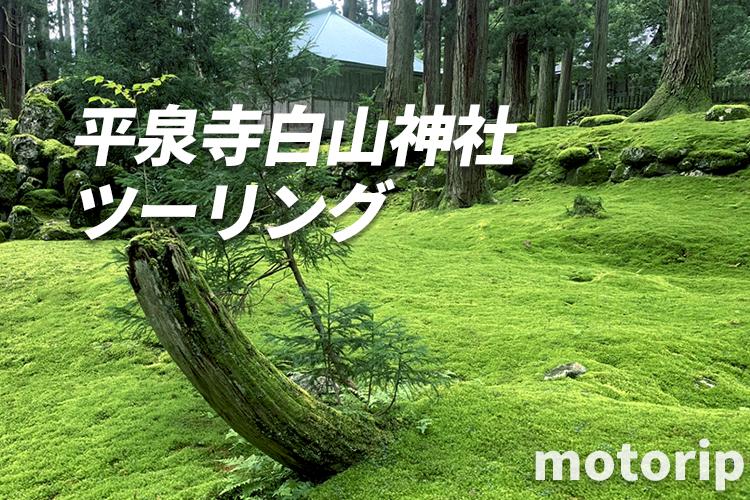 平泉寺 白山神社ツーリング|心が洗われる!福井の苔寺が美しい