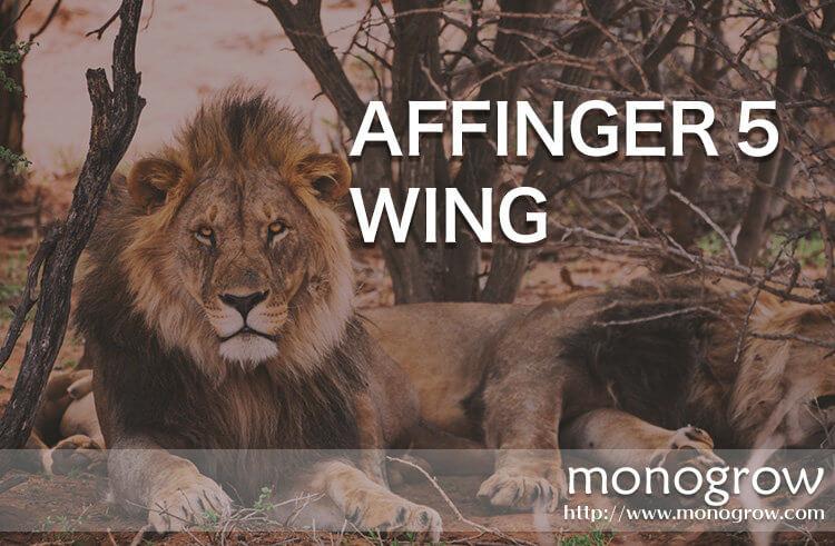 WordPress 有料テーマ AFFINGER 5 WING|初心者におすすめしたいアフィンガーのレビュー