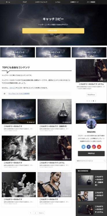 AFFINGER EX デザインテンプレート「INAZUMA」