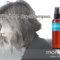 ザ・プロダクト|洗い流さないドライシャンプーで頭皮のニオイ対策!帽子も怖くない!